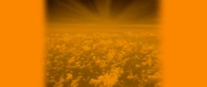 oracle-content-cloud-compendium